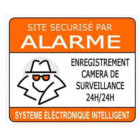 Autocollant ou panneau, site sécurisé par alarme