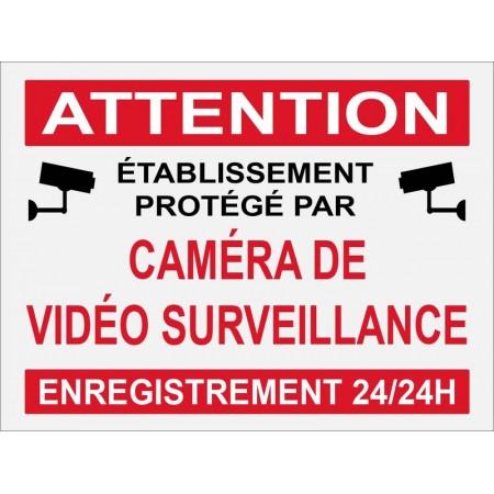 Etablissement protégé par caméra de vidéo surveillance autocollant ou panneau