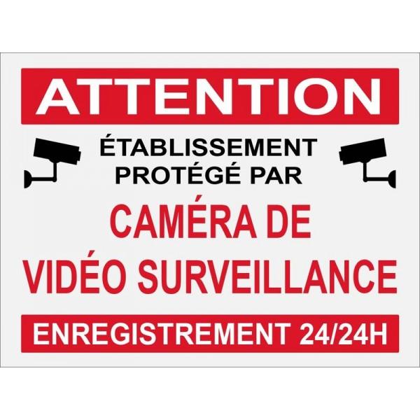 Etablissement protégé par caméra de vidéo surv...