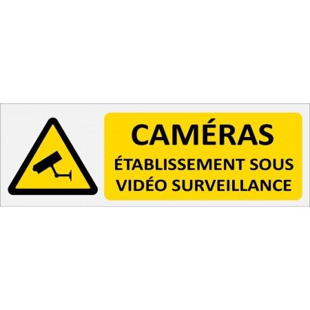 Etablissement sous vidéo surveillance