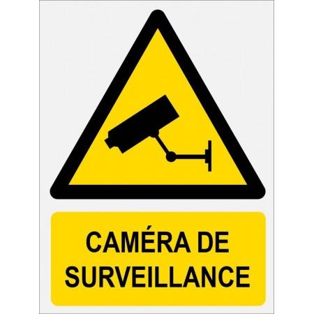Autocollant ou panneau protection contre cambriolage sécurité par caméra de surveillance