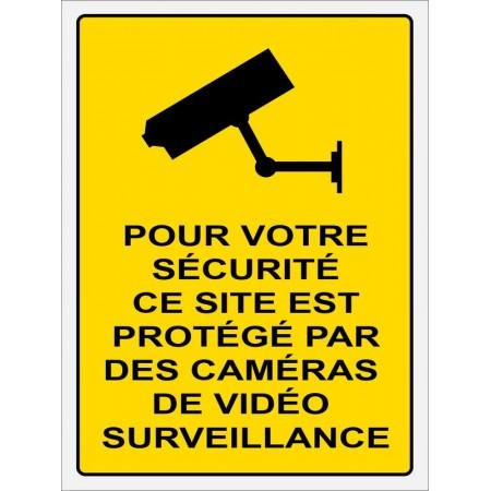 Autocollant et panneau contre cambrioleur, établissement protégé par caméras