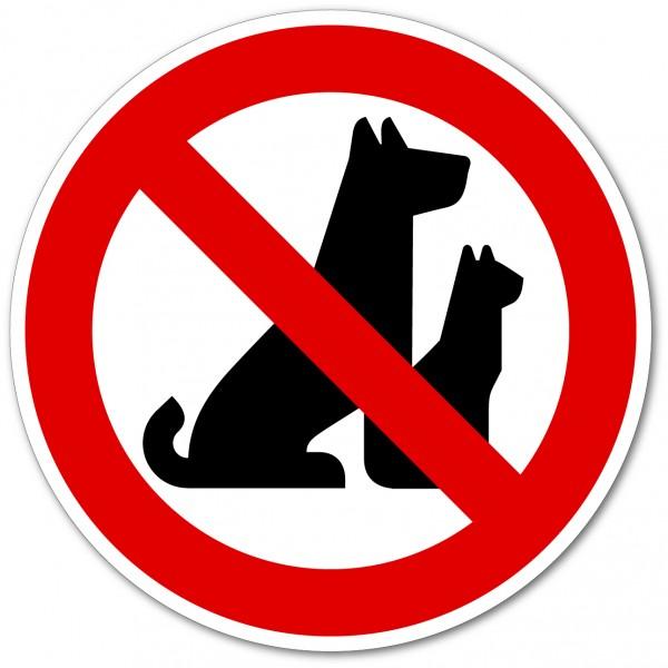 Chiens et chats interdit